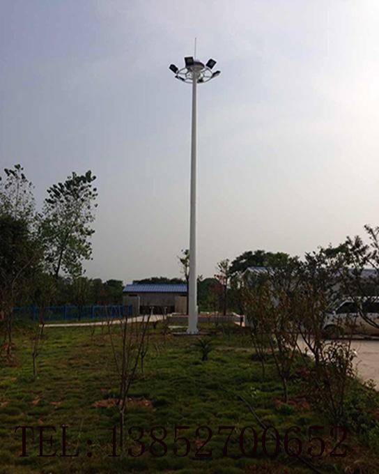 中(高)杆灯10103