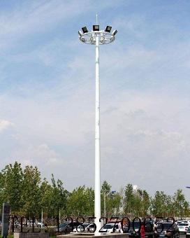 中(高)杆灯10106